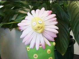 Flower doll with cloth face