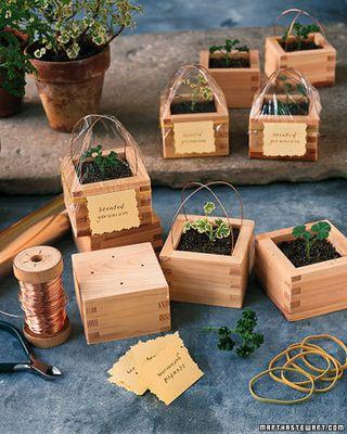 Sake box planter gift