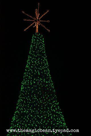 Christmas Lights