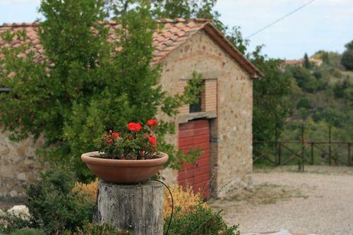 Flower pot in San Ansano