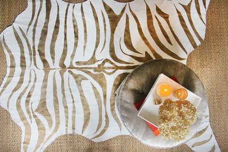 Rug zebra print dropcloth
